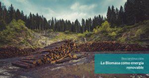 curso biomasa online